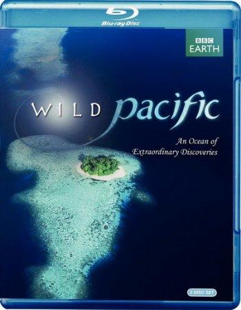 Тайны Тихого океана / BBC: Дикая Тихоокеания / BBC: South Pacific / BBC: Wild Pacific (2009/BDRip/72