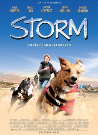 Летний шторм
