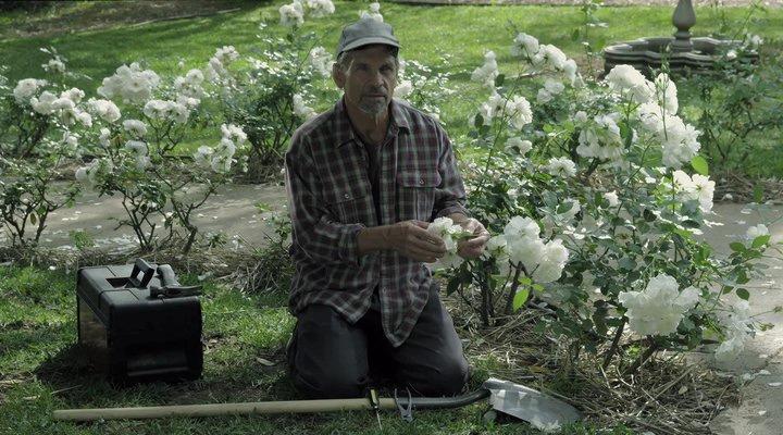 Призраки Салема / A Haunting in Salem (2011)
