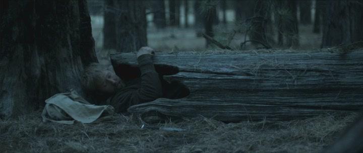 Смертельная ловушка / Deadfall Trail (2009)