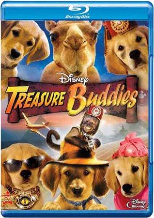 Пятерка кладоискателей / Treasure Buddies (2010)