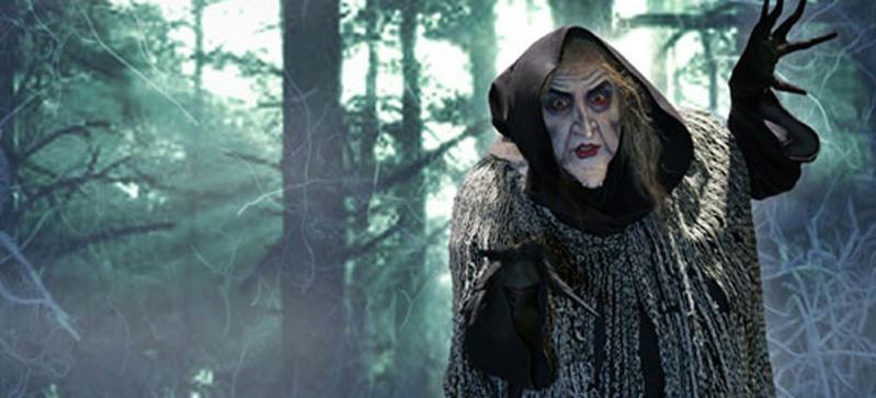 Охотники на ведьм / Hansel and Gretel: Witch Hunters (2013)