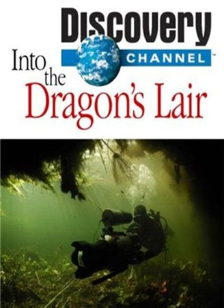 В логово драконов / In the dragons lair (2012)