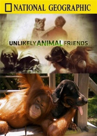 Странная дружба / National Geographic. Unlikely Animal Friends (2009)