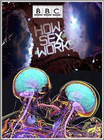 ���. ��� ��������� ���� / How Sex Works (2012)