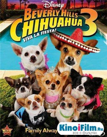 Крошка из Беверли-Хиллз 3 / Beverly Hills Chihuahua 3: Viva La Fiesta! (2012)