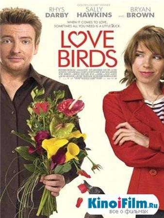 Любовные пташки / Love Birds (2012)