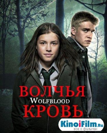 Волчья кровь / Wolfblood / 1 сезон  (2013)