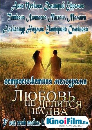 Любовь не делится на два / 4 серии (2013)