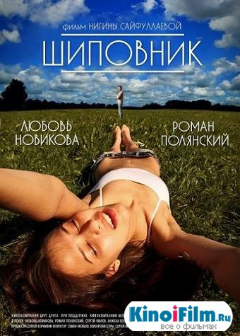 Шиповник (2011)
