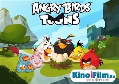 Злые птички / Angry Birds Toons (2013)